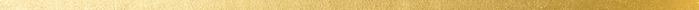 gold divider-11